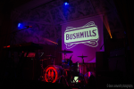 Bushmills 1