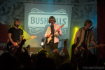 Bushmills V3