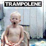 Trampolene BP