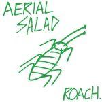 Aerial Salad Roach